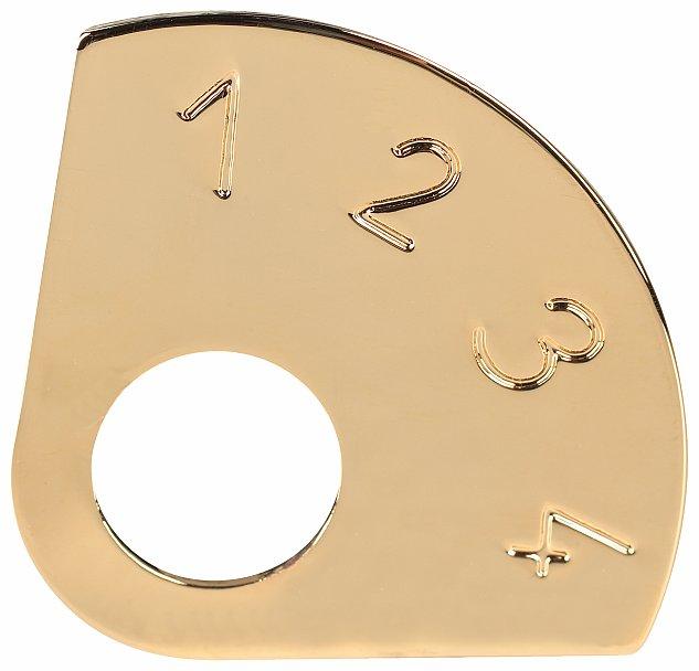Framus Vintage Parts - 4-Position Control Plate, Gold