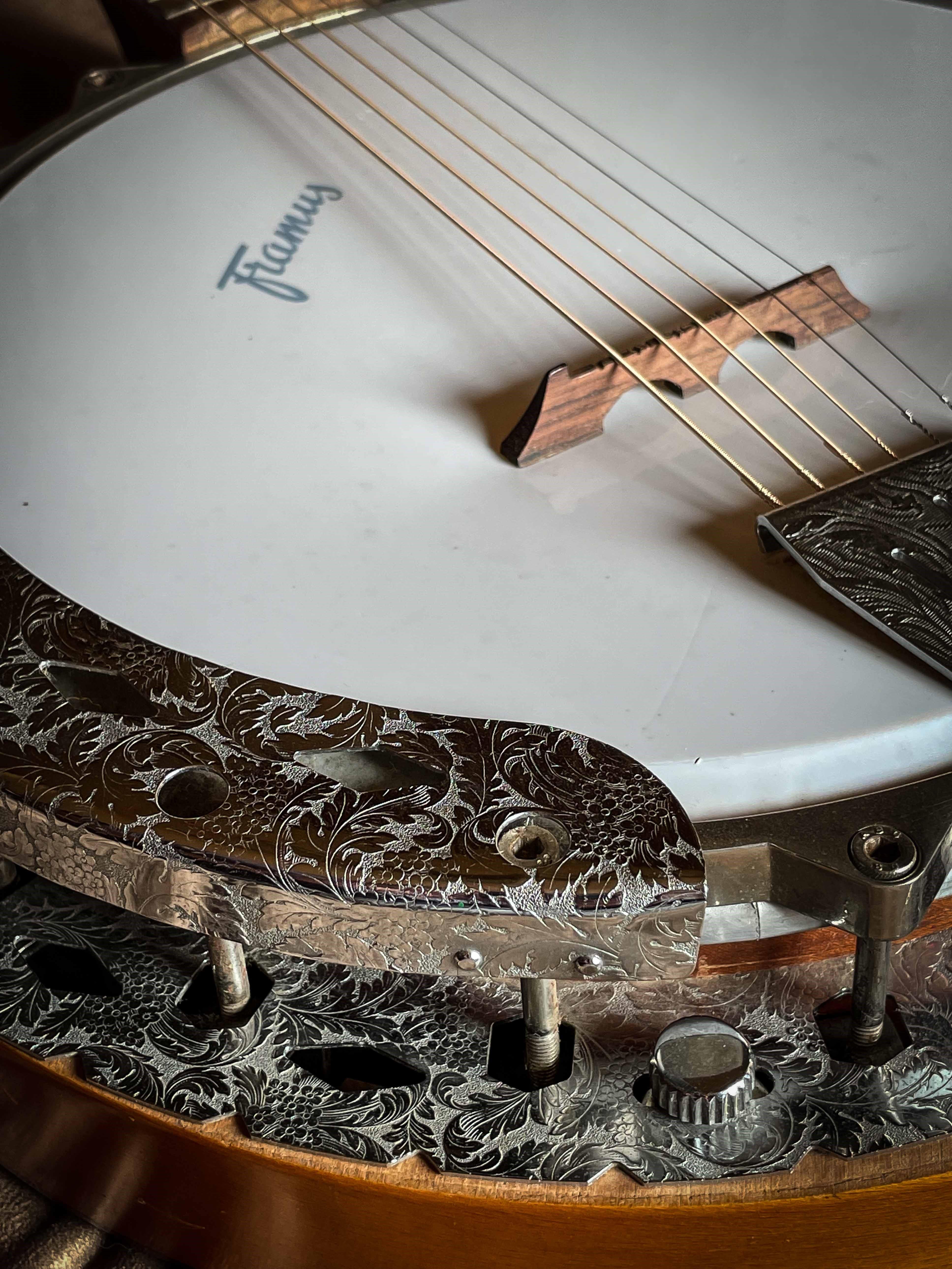 ALBUM: Framus Banjo 13140  - 6  string model (April 1968)